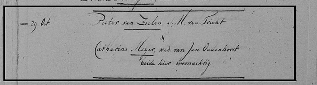 1787 29 10 huwelijk Pieter van Zoelen in Loenen