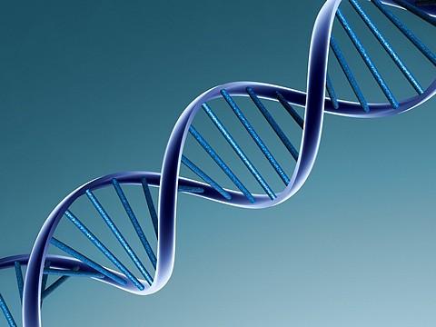 DNA nazaten gezocht 01